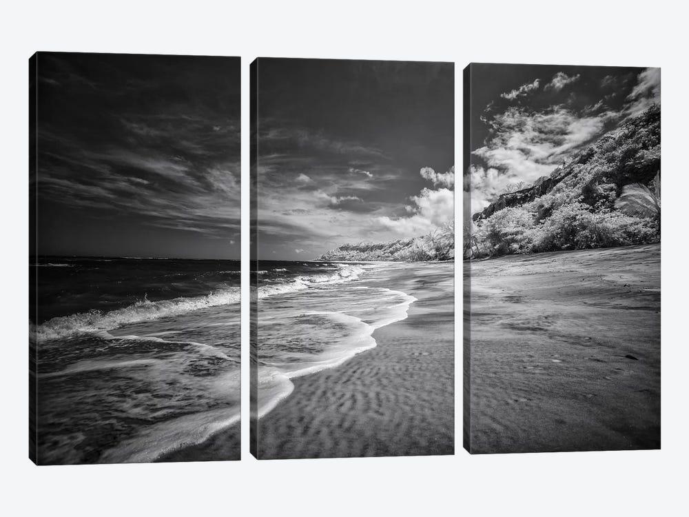 Beach Black & White - Bahia, Brazil by Glauco Meneghelli 3-piece Art Print
