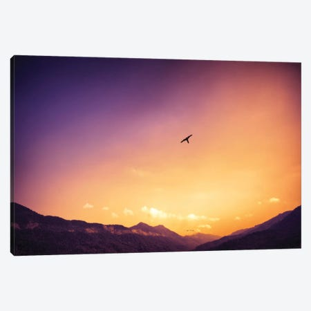 Lonely Bird Canvas Print #GLM97} by Glauco Meneghelli Canvas Wall Art