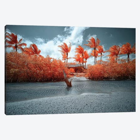 Lonely House - Bahia, Brazil Canvas Print #GLM98} by Glauco Meneghelli Canvas Art Print