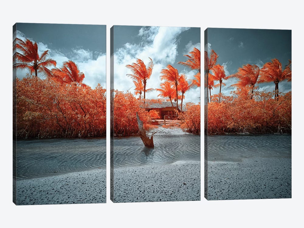 Lonely House - Bahia, Brazil by Glauco Meneghelli 3-piece Canvas Wall Art