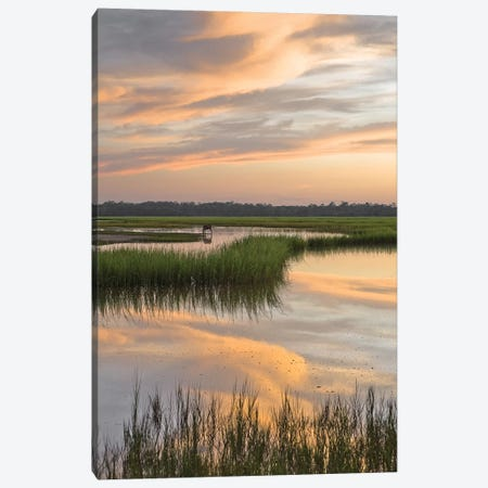 Marsh Beauty Canvas Print #GLT7} by Glenn Taylor Canvas Wall Art