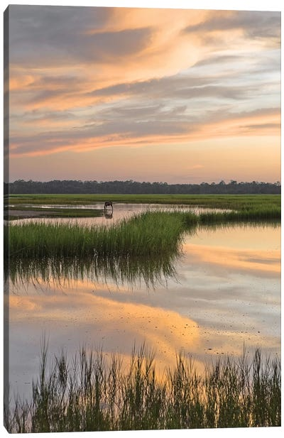 Marsh Beauty Canvas Art Print