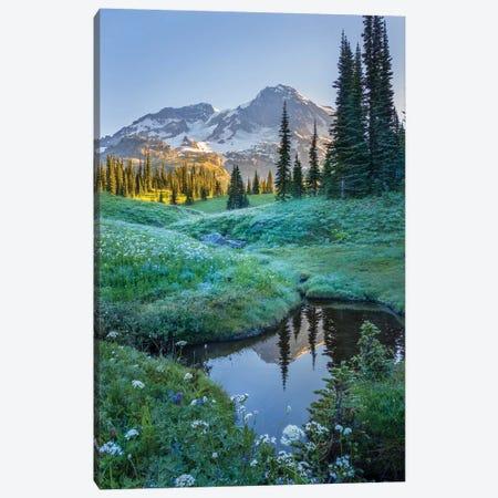 USA. Washington State. Mt. Rainier reflected in tarn amid wildflowers, Mt. Rainier National Park I Canvas Print #GLU14} by Gary Luhm Canvas Art