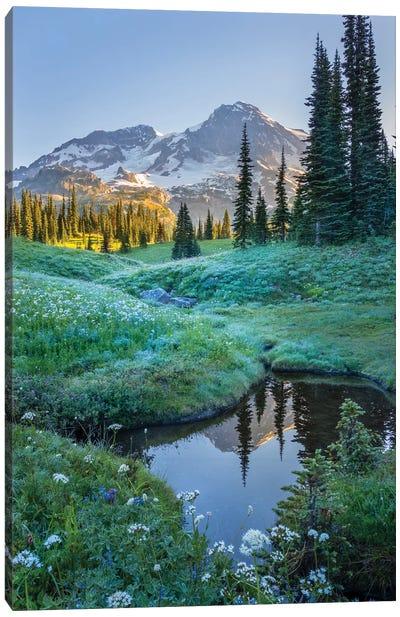 USA. Washington State. Mt. Rainier reflected in tarn amid wildflowers, Mt. Rainier National Park I Canvas Art Print
