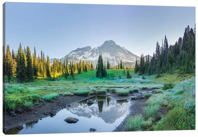 USA. Washington State. Mt. Rainier reflected in tarn amid wildflowers, Mt. Rainier National Park II Canvas Art Print