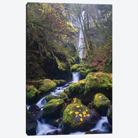 USA, Oregon. Autumn view of McCord Creek flowing below Elowah Falls in the Columbia River Gorge. Canvas Print #GLU19} by Gary Luhm Canvas Print