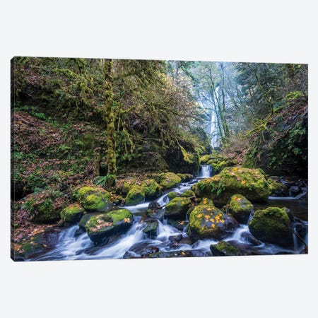 USA, Oregon. Autumn view of McCord Creek flowing below Elowah Falls in the Columbia River Gorge. Canvas Print #GLU20} by Gary Luhm Canvas Art