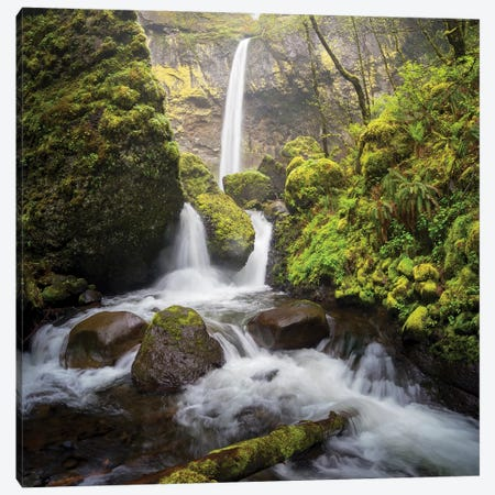 USA, Oregon. Spring view of McCord Creek flowing below Elowah Falls in the Columbia River Gorge. Canvas Print #GLU21} by Gary Luhm Canvas Art