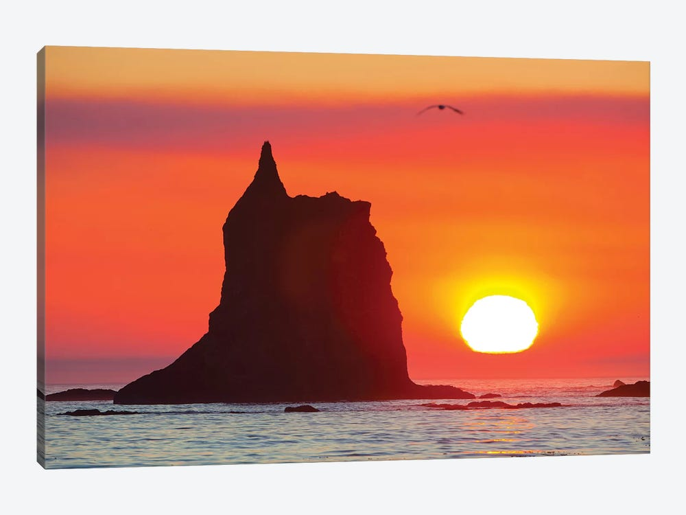 Sea Stack With A Setting Sun In The Background, Toleak Point, Olympic National Park, Washington, USA 1-piece Canvas Art