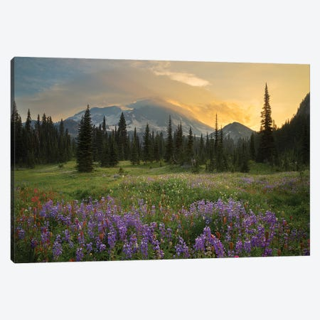Mountainside Landscaper, Indian Henry's Hunting Ground, Mount Rainier National Park, Washington, USA Canvas Print #GLU4} by Gary Luhm Art Print