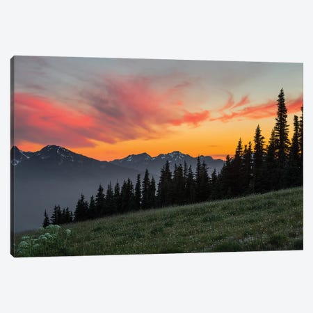 Majestic Sunset As Seen From Hurricane Ridge, Olympic National Park, Washington, USA Canvas Print #GLU5} by Gary Luhm Canvas Print