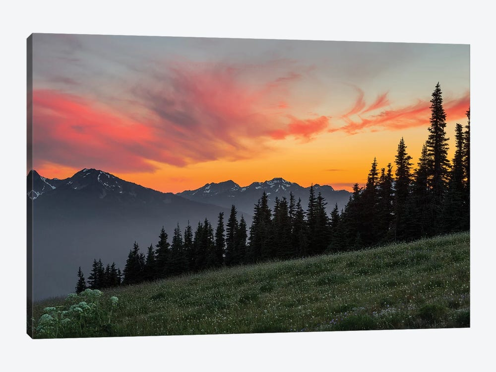 Majestic Sunset As Seen From Hurricane Ridge, Olympic National Park, Washington, USA by Gary Luhm 1-piece Canvas Art Print