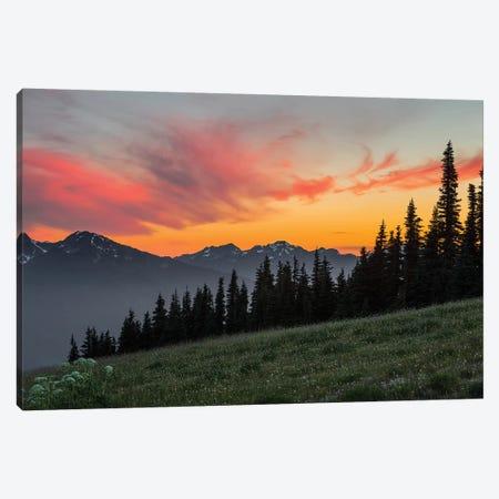 Majestic Sunset As Seen From Hurricane Ridge, Olympic National Park, Washington, USA Canvas Print #GLU5} by Gary Luhm Canvas Print