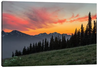 Majestic Sunset As Seen From Hurricane Ridge, Olympic National Park, Washington, USA Canvas Art Print