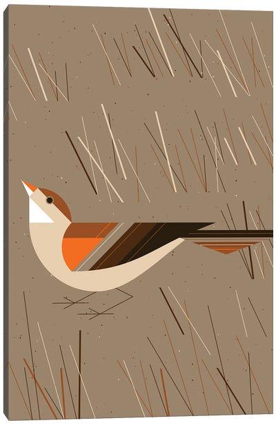 Grass Finch Canvas Art Print