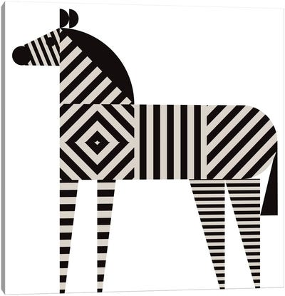 Zebra Stripe Canvas Art Print