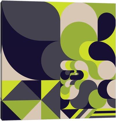 Moss Canvas Art Print