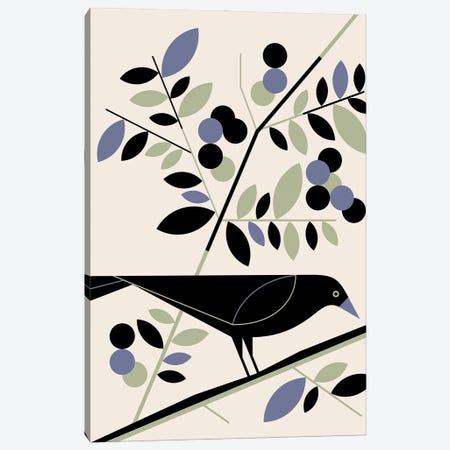 American Crow Canvas Print #GMA96} by Greg Mably Canvas Art Print