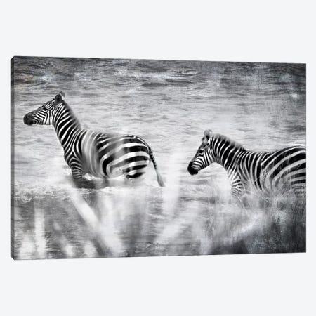 African Plains X Canvas Print #GMI10} by Golie Miamee Canvas Art