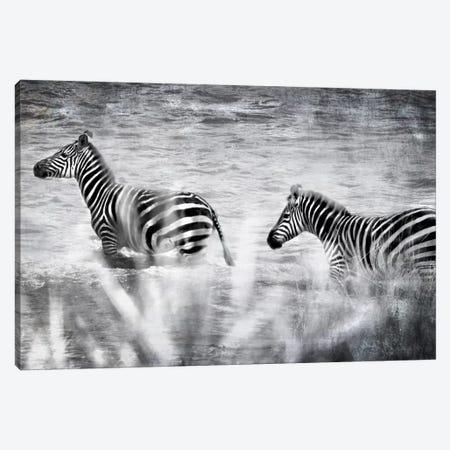 African Plains X Canvas Print #GMI10} by Golie Miamee Canvas Art