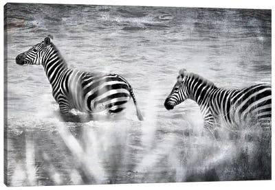 African Plains X Canvas Art Print