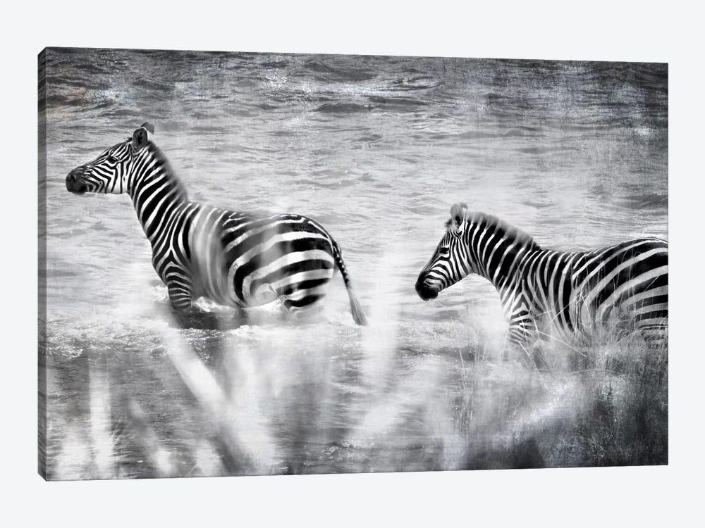 African Plains X by Golie Miamee 1-piece Canvas Art Print