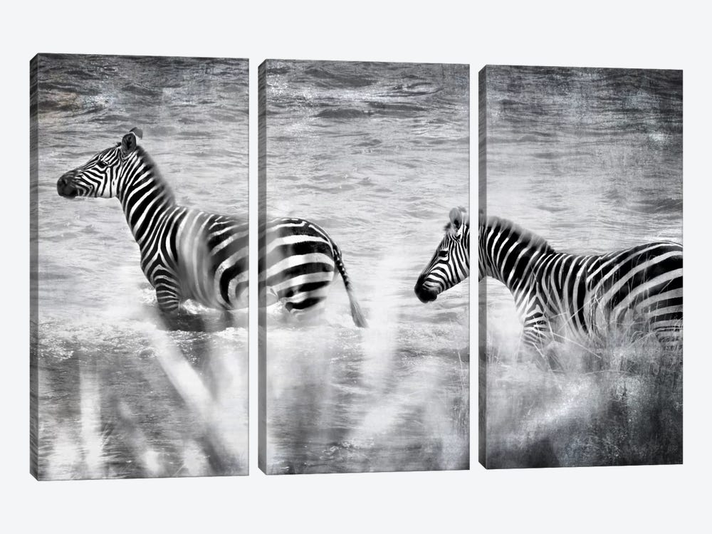 African Plains X by Golie Miamee 3-piece Canvas Print