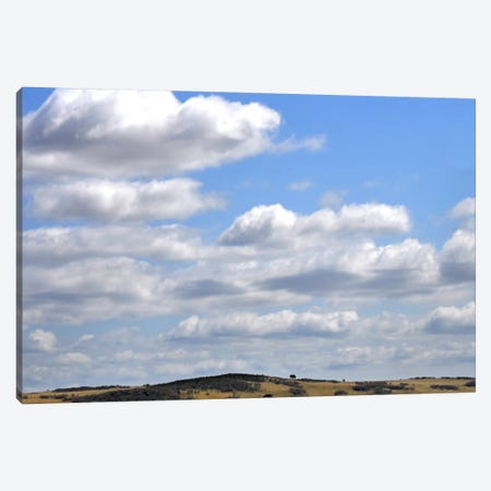 Bucolic Scene II Canvas Print #GMI12} by Golie Miamee Canvas Wall Art