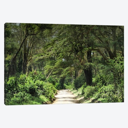 Bucolic Scene VI Canvas Print #GMI15} by Golie Miamee Canvas Print