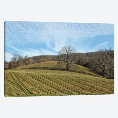 Bucolic Scene X Canvas Print #GMI19} by Golie Miamee Canvas Art