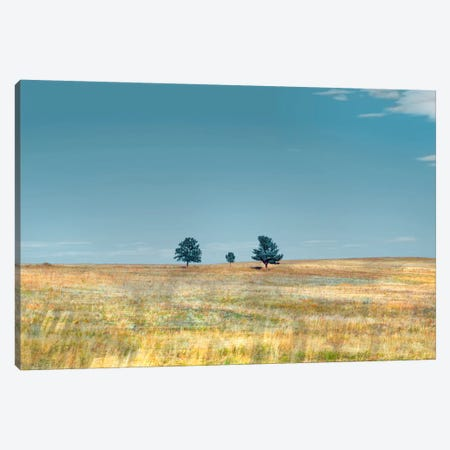 Bucolic Scene XV Canvas Print #GMI24} by Golie Miamee Canvas Wall Art