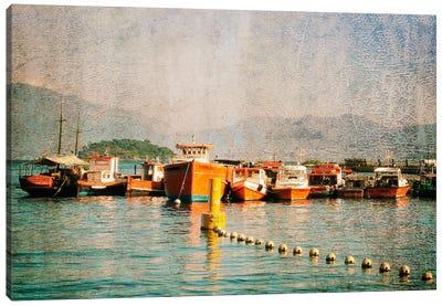 Exotic Waters VIII Canvas Art Print