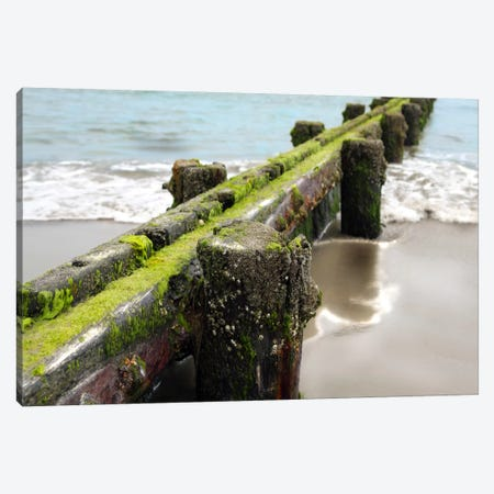 Scene Along The Water V Canvas Print #GMI38} by Golie Miamee Canvas Wall Art