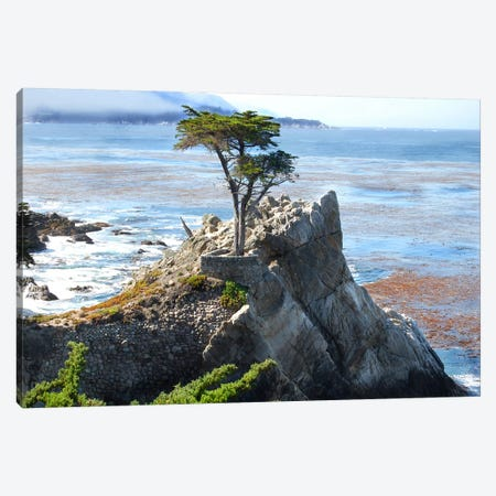 Scene Along The Water VII Canvas Print #GMI39} by Golie Miamee Canvas Artwork