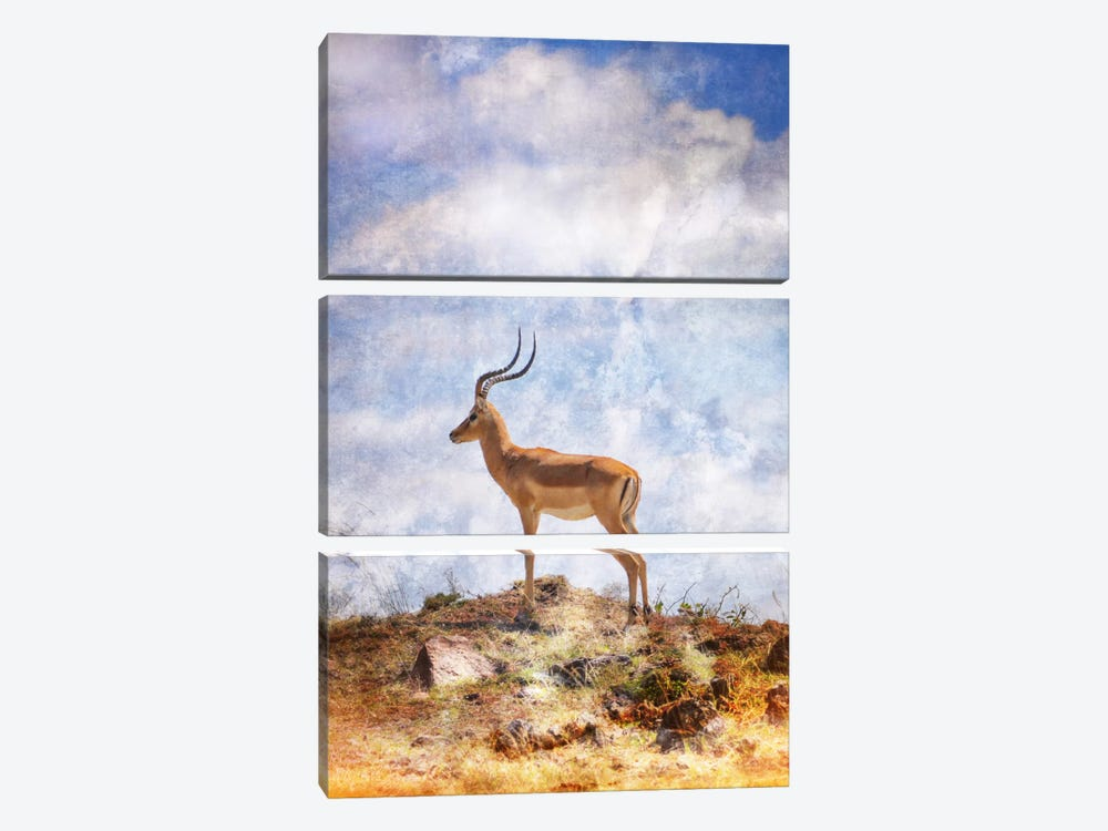 African Plains III by Golie Miamee 3-piece Canvas Wall Art