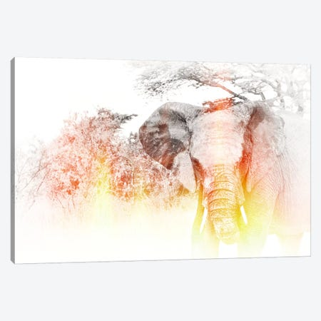 Golden Elephant Canvas Print #GMI46} by Golie Miamee Canvas Wall Art