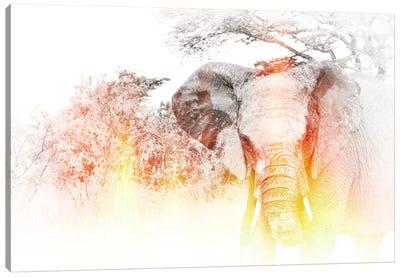 Golden Elephant Canvas Art Print