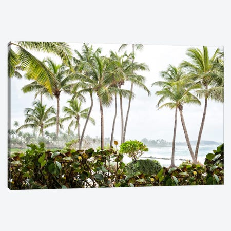 After The Dorado Rain Canvas Print #GMI52} by Golie Miamee Canvas Wall Art