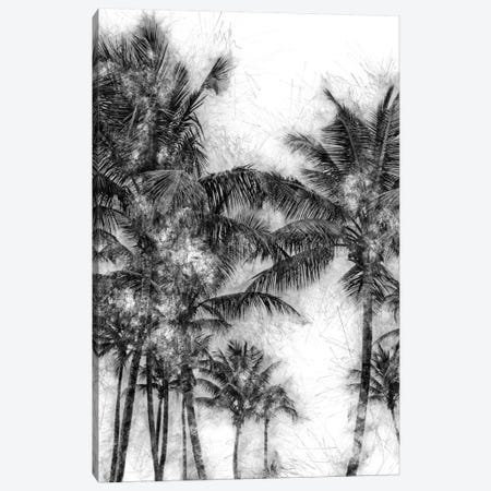 Dorado Palms Canvas Print #GMI53} by Golie Miamee Canvas Wall Art