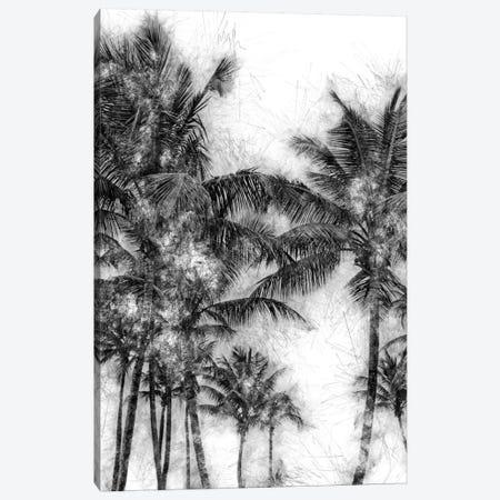 Dorado Palms Canvas Print #GMI53} by Golie Miamee Canvas Wall Art