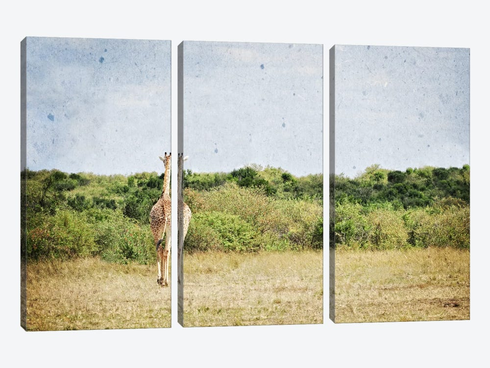 African Plains V by Golie Miamee 3-piece Canvas Wall Art