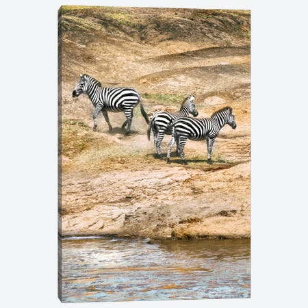 African Plains VII Canvas Print #GMI7} by Golie Miamee Canvas Print