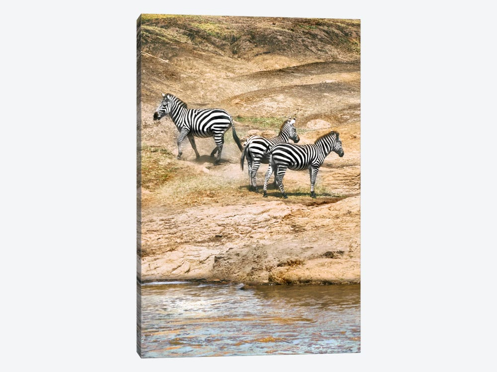 African Plains VII by Golie Miamee 1-piece Canvas Wall Art