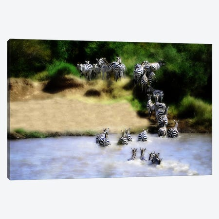 African Plains IX Canvas Print #GMI9} by Golie Miamee Canvas Wall Art
