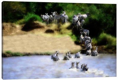 African Plains IX Canvas Art Print