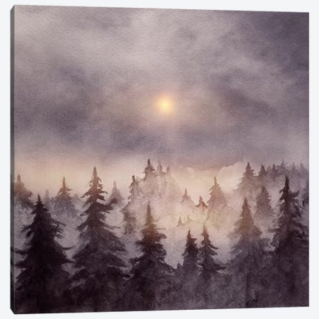 In The Forest III Canvas Print #GNZ29} by Marco Gonzalez Canvas Wall Art