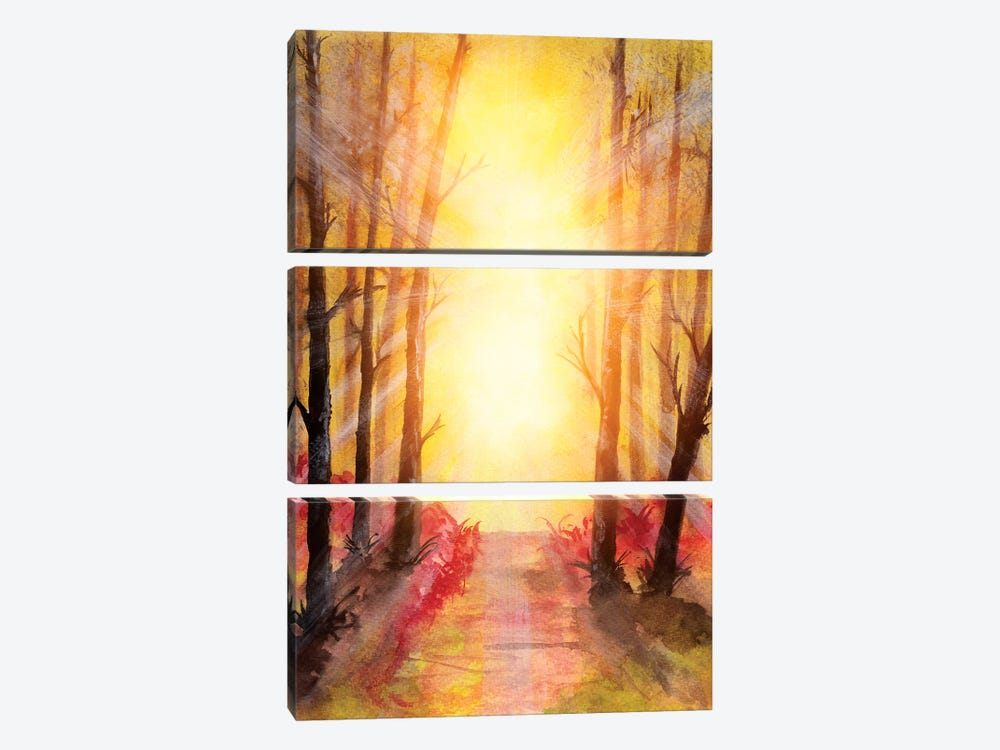 In The Forest V by Marco Gonzalez 3-piece Canvas Art Print
