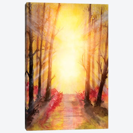 In The Forest V 3-Piece Canvas #GNZ31} by Marco Gonzalez Canvas Print