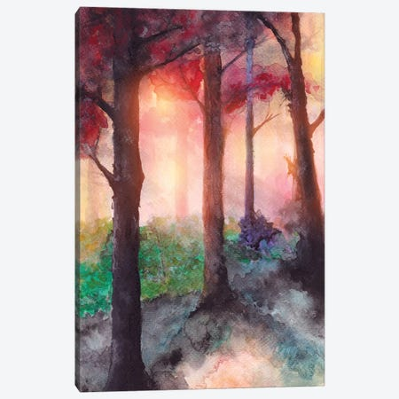 In The Forest VII Canvas Print #GNZ33} by Marco Gonzalez Canvas Art Print
