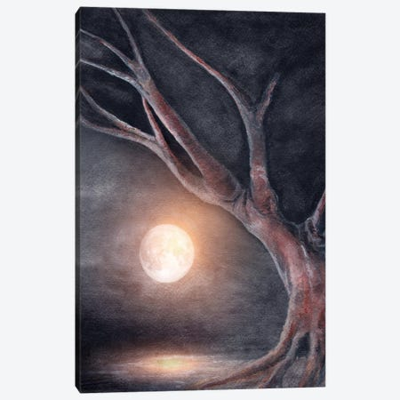 The Moon Canvas Print #GNZ35} by Marco Gonzalez Canvas Wall Art
